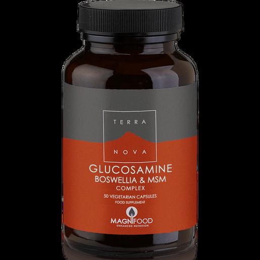 Terranova Glucosamine, Boswellia & MSM Complex - Joint Support 100% Φυτική Σύνθεση για τα Προβλήματα των Αρθρώσεων
