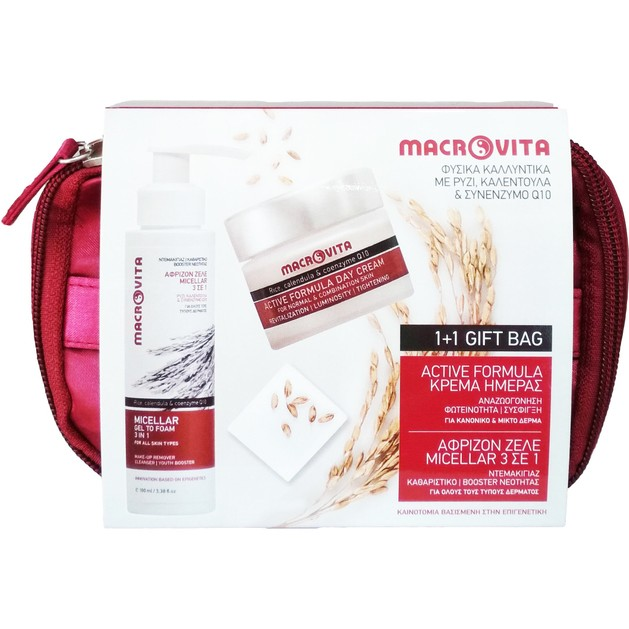 Macrovita Πακέτο Προσφοράς Micellar Gel to Foam 3 in 1, 100ml & Active Formula Day Cream Normal/Combination Skin 40ml 1+1 Δώρο