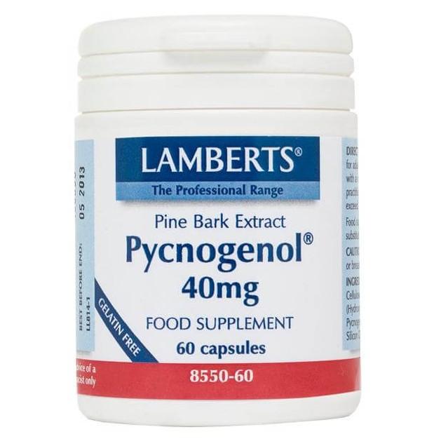 Lamberts Pycnogenol Συμπλήρωμα Διατροφής με Εκχύλισμα από το Φλοιό του Πεύκου Maritime 40mg 60tabs