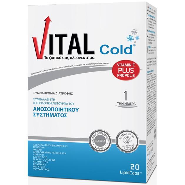 Vital Plus Cold Ενισχύουν Το Ανοσοποιητικού Σύστημα 20Lipid caps