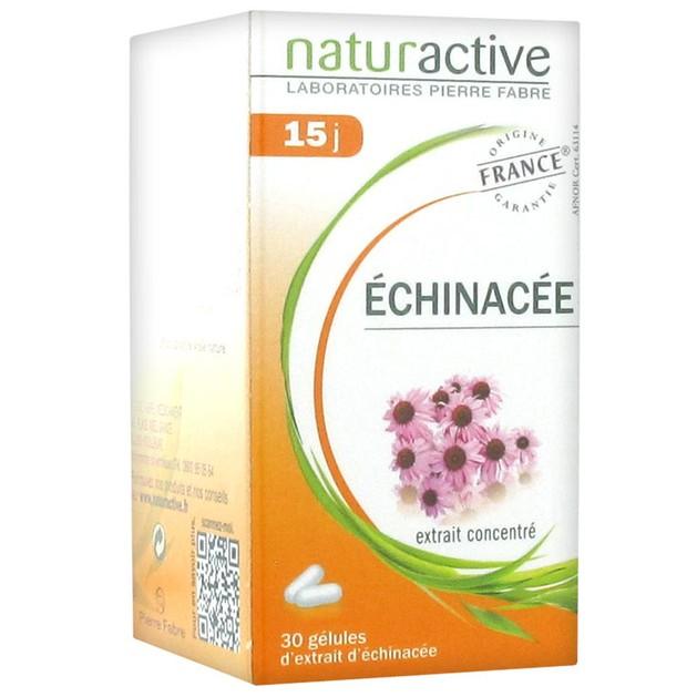 Naturactive Echinachea Συμπλήρωμα Διατροφής για Φυσική Ενίσχυση του Οργανισμού & Προστασία του Ανοσοποιητικού