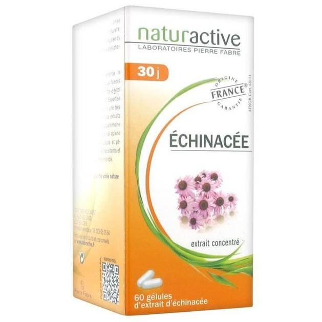 Naturactive Echinachea Συμπλήρωμα Διατροφής για Φυσική Ενίσχυση του Οργανισμού & Προστασία του Ανοσοποιητικού 60caps