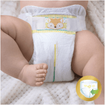 Pampers Premium Care No1 (2-5kg) 54 πάνες