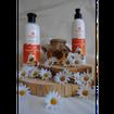 SempreViva Shower Bath Camomile & Honey, Αφρόλουτρο Χαμομήλι & Μέλι 400ml