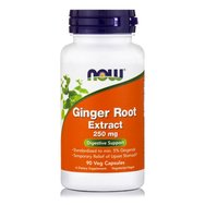 Now Foods Ginger Root Extract Ανακούφιση Από τη Ναυτία και τις Προσωρινές Στομαχικές Διαταραχές 250mg 90caps