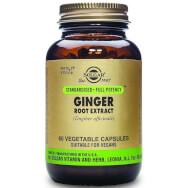Solgar Sfp Ginger Root Extract Συμπλήρωμα Διατροφής Χρήσιμο σε Πεπτικές Διαταραχές του Οργανισμού 60veg.caps